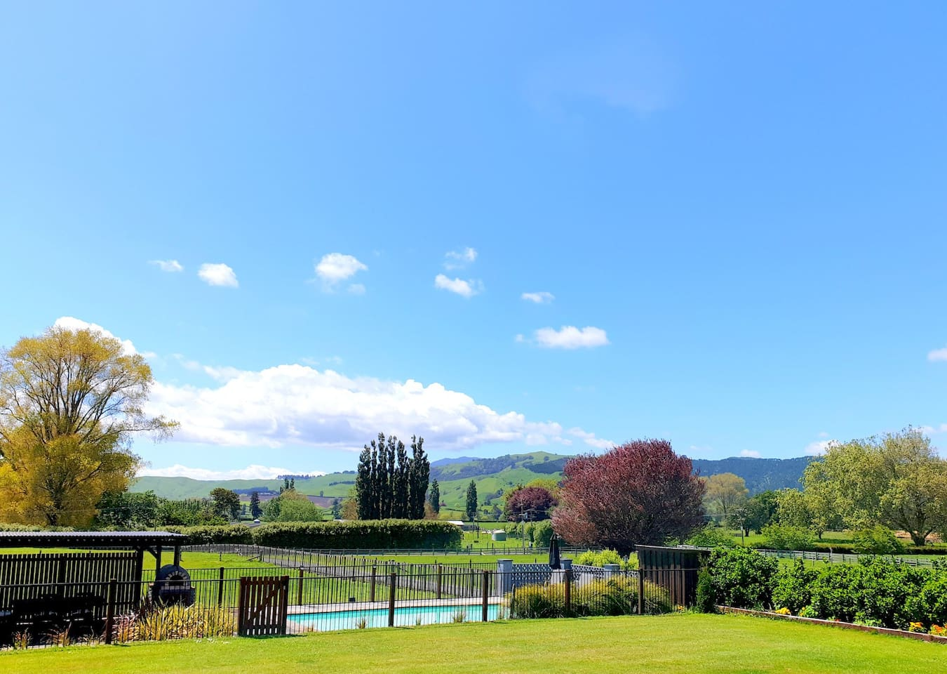 View of pool, garden and distant hills from our deck. Guests are welcome to use the pool and also the covered outdoor seating area.