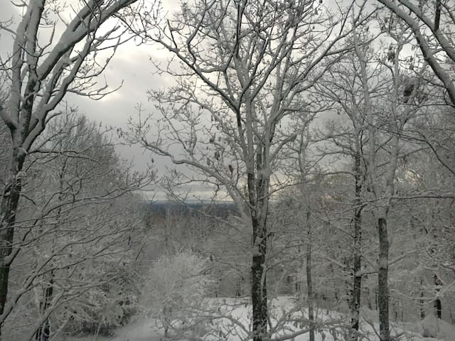 Winter wonderland views from a cozy spot indoors