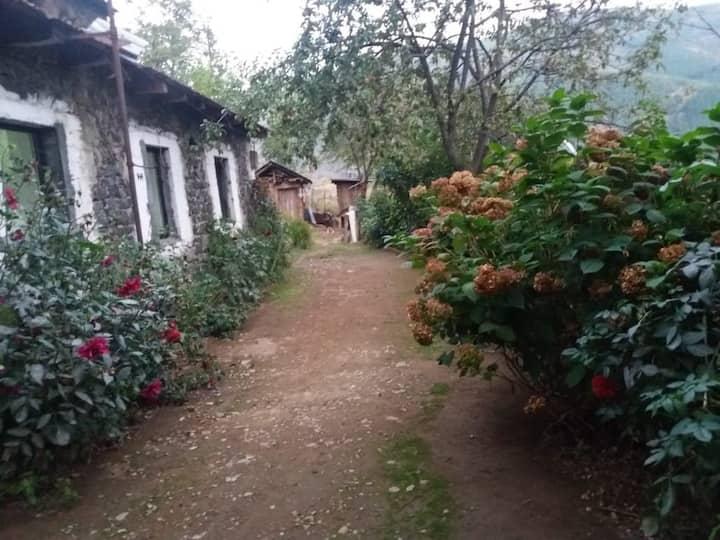 Eco Guesthouse Kryezi