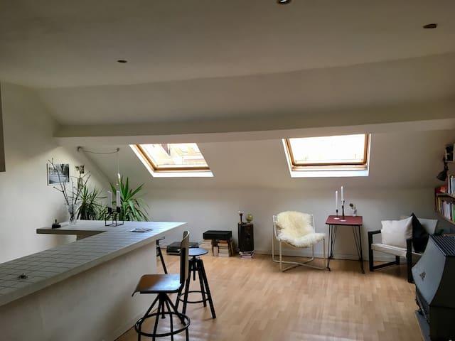 Spacious attic in Saint Gilles - Saint-Gilles - Byt