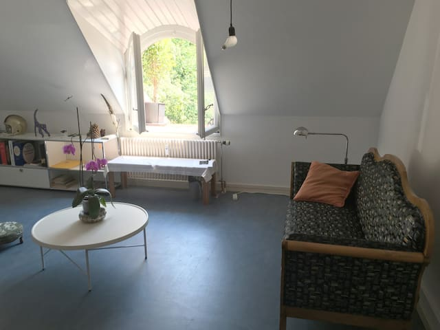 Studio close to center of Bern - Bern - Apartment