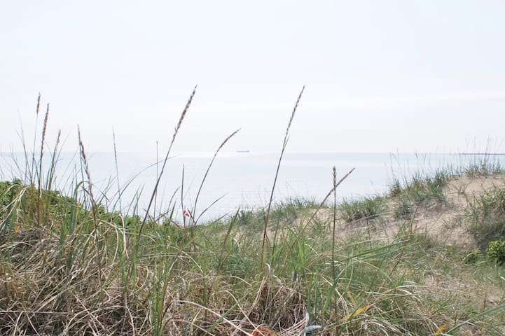 Snäppan 4, Skrea Strand längst fram vid klitterna!
