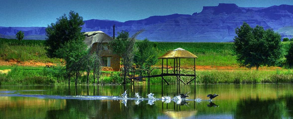 Shiriba Honeystone Cottage (Central Drakensberg)