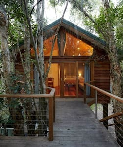 Treehouse · Treehouse · Treehouse · Treehouse · Treehouse · Treehouse · Treehouse · Treehouse in the Bush by the Beach!