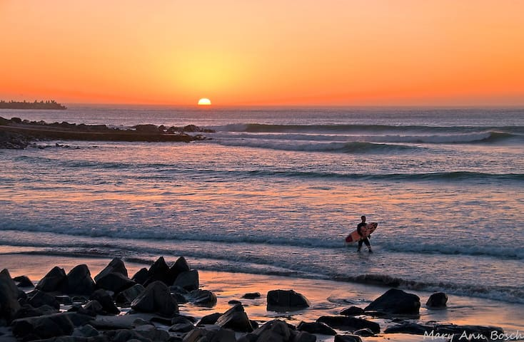 A lone surfer at sunset at Yzerfontein.