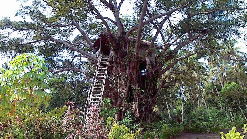 Mt Yasur's Volcanic Hideway Tree House