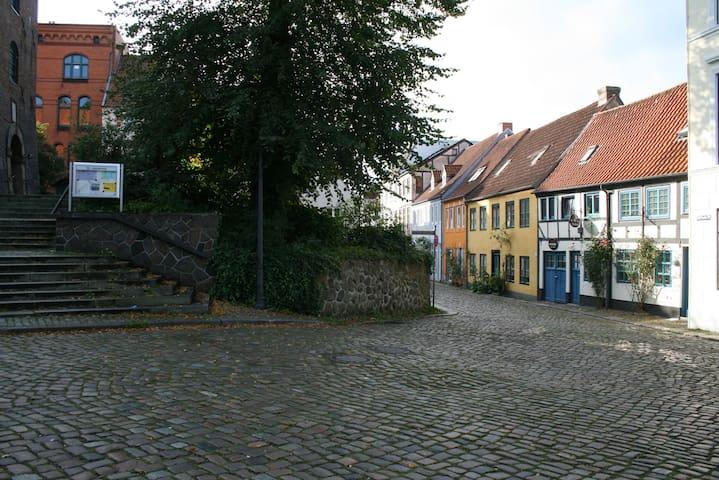 Ferienwohnung Stadtgrün - Flensburg - Lägenhet