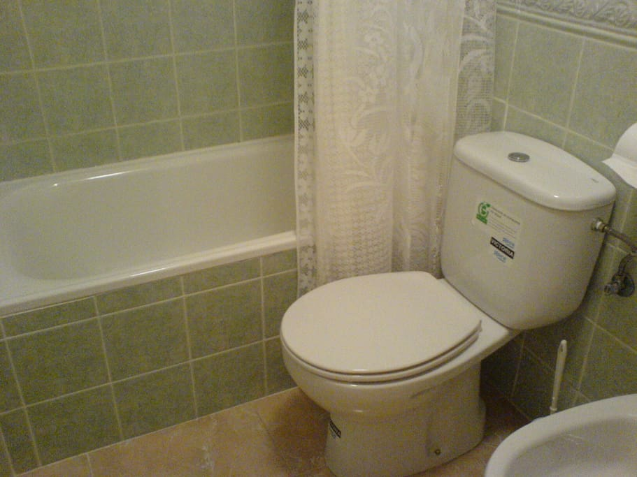 The modern family bathroom with bath, shower, toilet, sink and bidet.