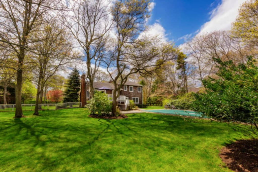 Expansive yard for children to explore