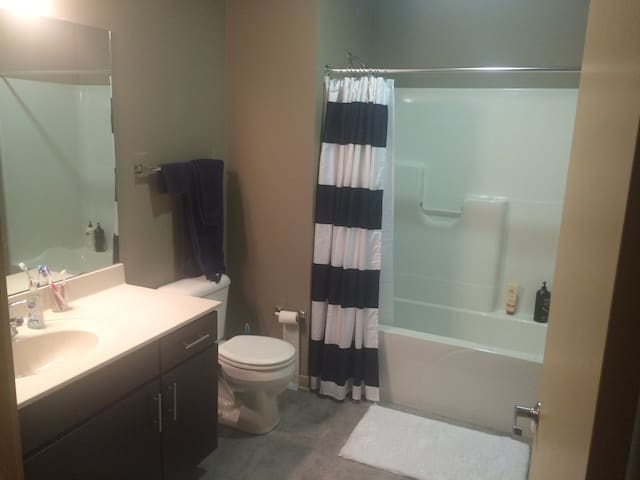 Beautiful 2 bedroom apartment-University Ave - Madison - Apartment