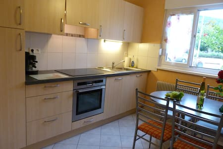 RENT BTF APARTMENT ON QUIET AT MUNSTER NEAR COLMAR - Munster