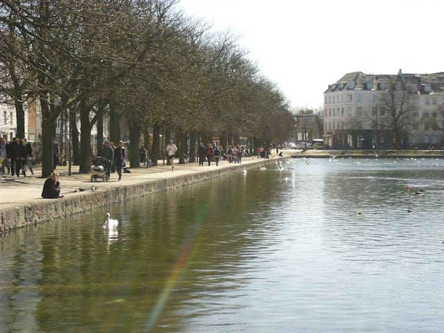 Enjoy cafes and a stroll around the copenhagen lakes close by