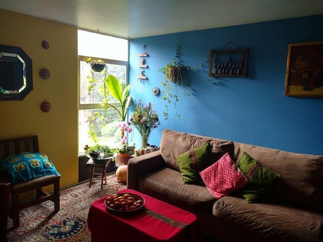 Habitación linda en Coyoacán, UNAM, San Ángel - Mexiko-Stadt - Wohnung