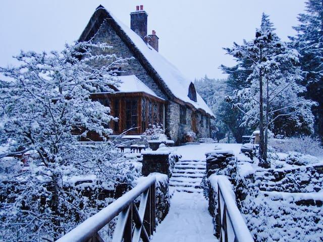 Snow fall at the Lodge.