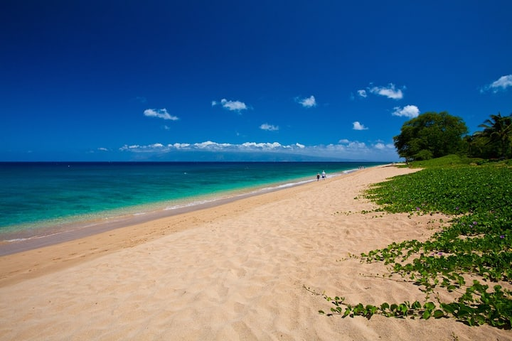 PRIME WINTER AVAILABILITY NOW! SEA SHELLS BEACHFRONT HOUSE ON KA`ANAPALI BEACH!!