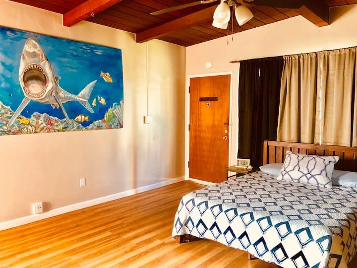 Shark's Cove @ Ocean Blue Beach Studios in PB