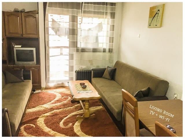 Cheap & Cozy Apartment