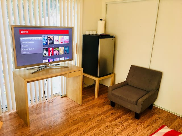 """Large 55""""Samsung LCD 3D Tv with Netflix Streaming, Mini Personal Refrigerator for your convenience."""