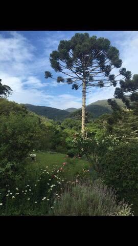 Suíte em um lindo Jardim - Aiuruoca - House