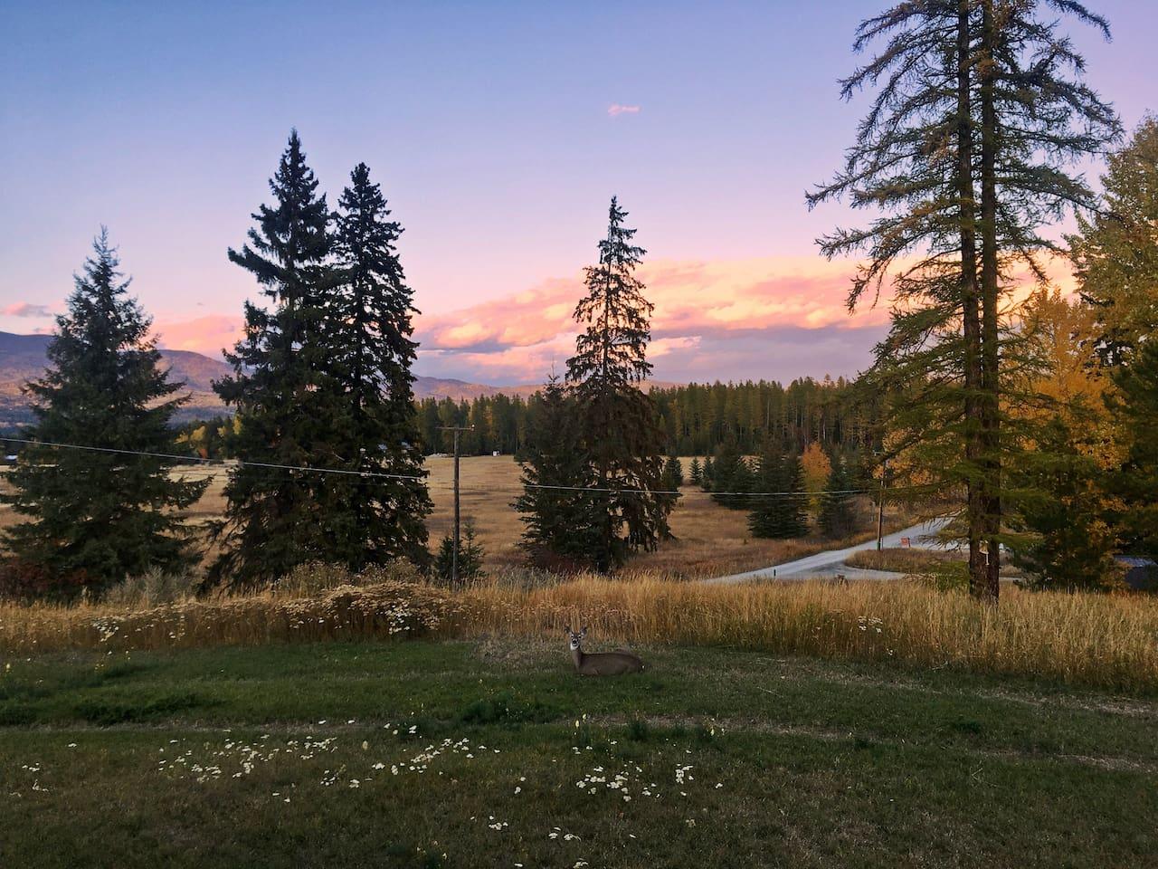 Fall sunset looking toward Glacier National Park.
