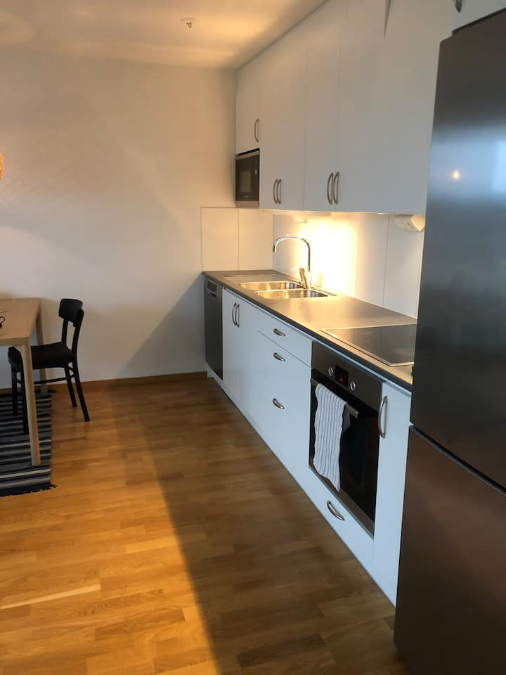 Nice new apartment, 10 min to city center