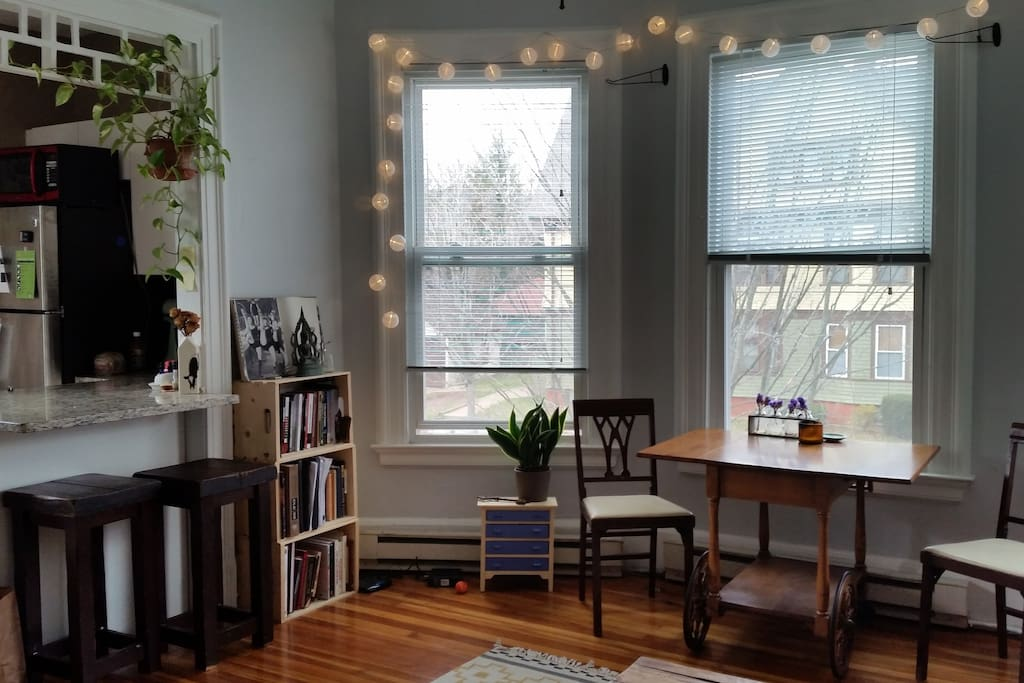 Sunny East Rock 1 Bedroom Yale Apartments For Rent In