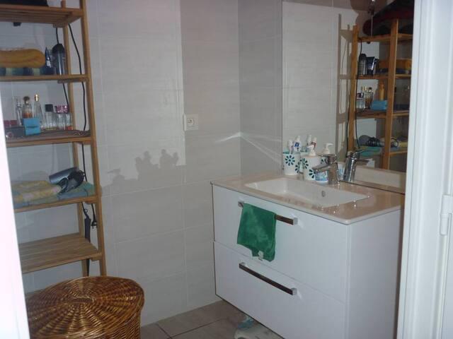 Bel appartement 60 m2,clair neuf et meublé.