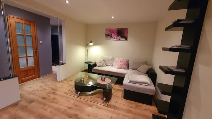 Karjamaa apartment- 4 km from Old Town