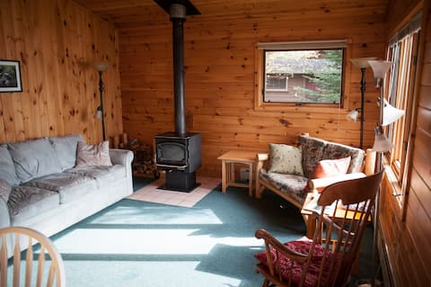 Cozy Cabin 5 with Amazing Boundary Waters View