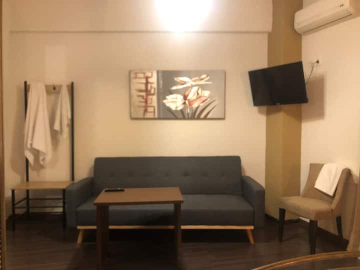 Vickys apartment thassos 2