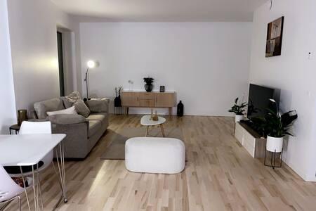 Lækker værelse/lejlighed midt i Odense sø