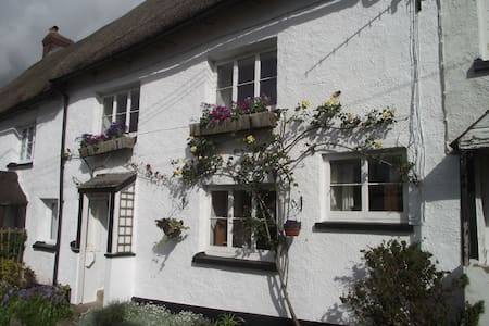 500 year-old character cottage in rural village - Winkleigh - House