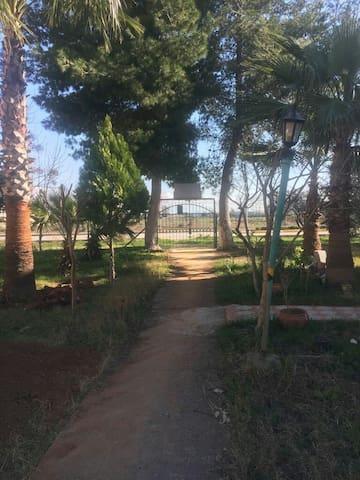 Site içerisinde dublex villa tipi ev.