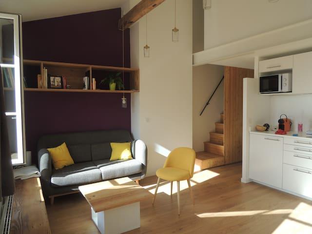 la maison sous les toits duplex avec 2 chambres apartments for rent in lyon auvergne rhne alpes france