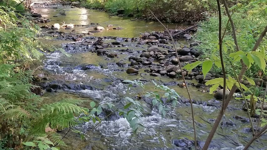 Sleep or just relax to the sounds of the Barton Brook as you enjoy Adirondack nature.