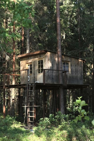 Treehouse is 3 meters above. There is a rope-ladder to get up.