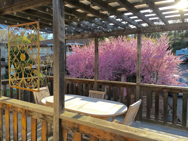 Sunny Deck, walk to Bart - Walnut Creek - Apartamento