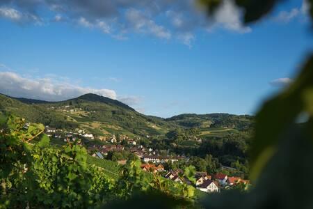 Direkt am Weinberg im Herzen von Sasbachwalden
