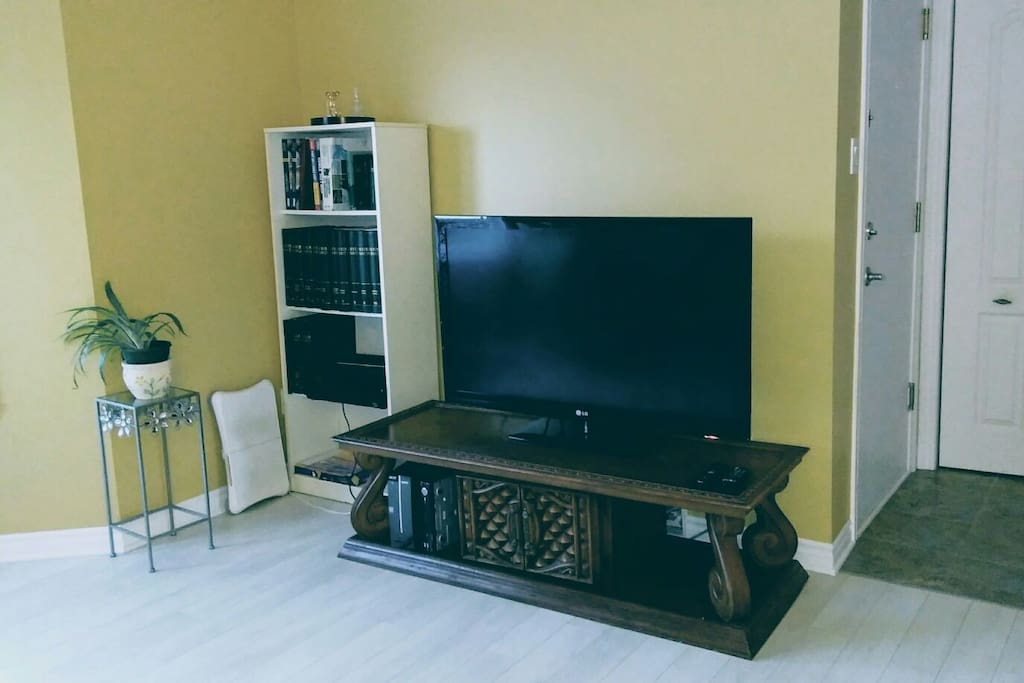 common space: tv with cable