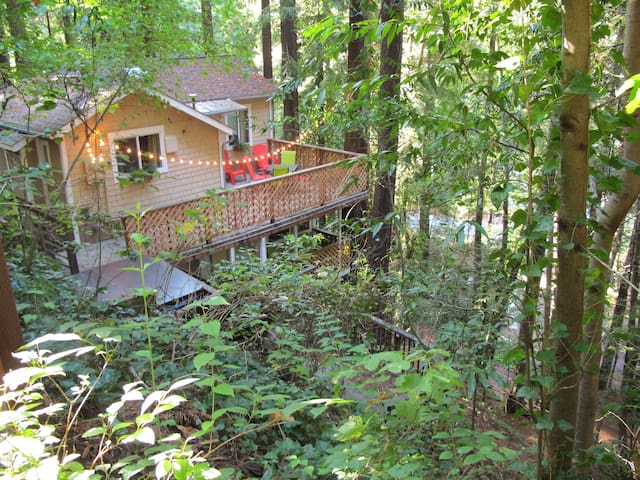 Peaceful Redwood Retreat w/ HOT TUB - Monte Rio - Dom