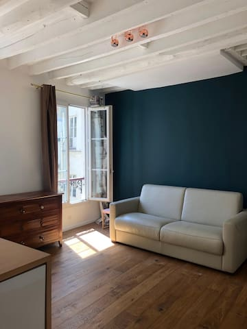 Sunny studio in the heart of Paris