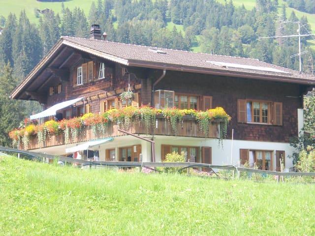 Ausruhen in den Bergen in Adelboden- Swiss Alps! - Adelboden - Apartamento