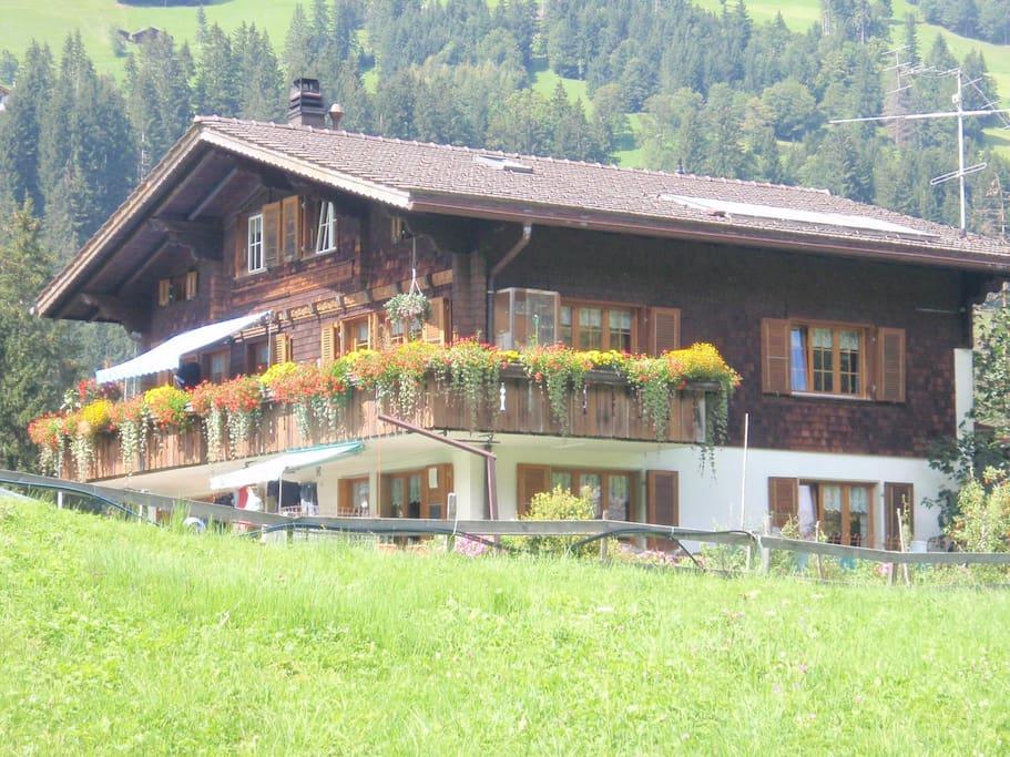 Wandern in Adelboden!