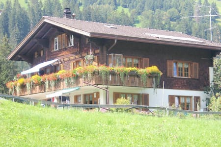 Ausruhen in den Bergen in Adelboden- Swiss Alps! - Adelboden - Huoneisto