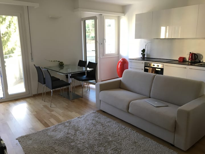 Bright apartment near the center of Lugano