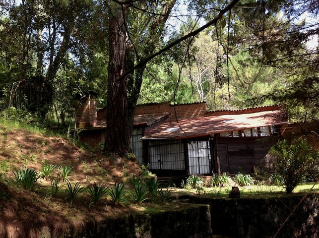 """Cabaña en el bosque """"Paloma""""de"""