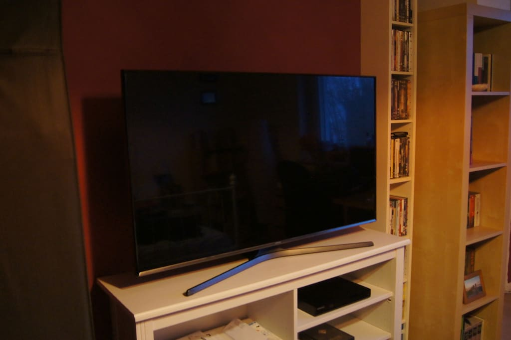 New 48'' LED screen with some channels, blu-ray player and many DVDs that guests are welcome to use :)