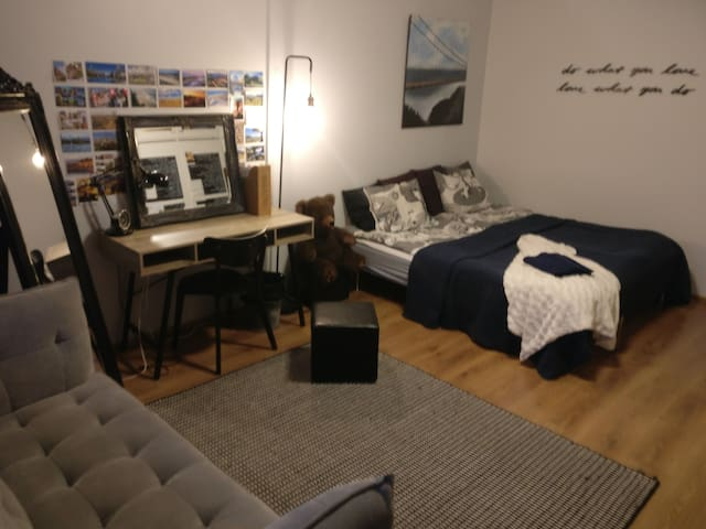 Cozy apartment in the city center (Entire place)