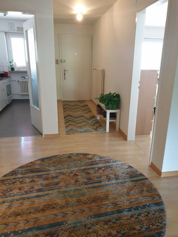 Double room in a two bed apartment in Oerlikon.