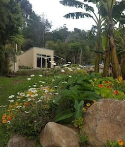 The Plantation - subtropical hideaway - Ngunguru